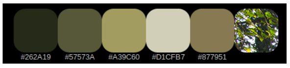Screenshot of original earth tone color choices